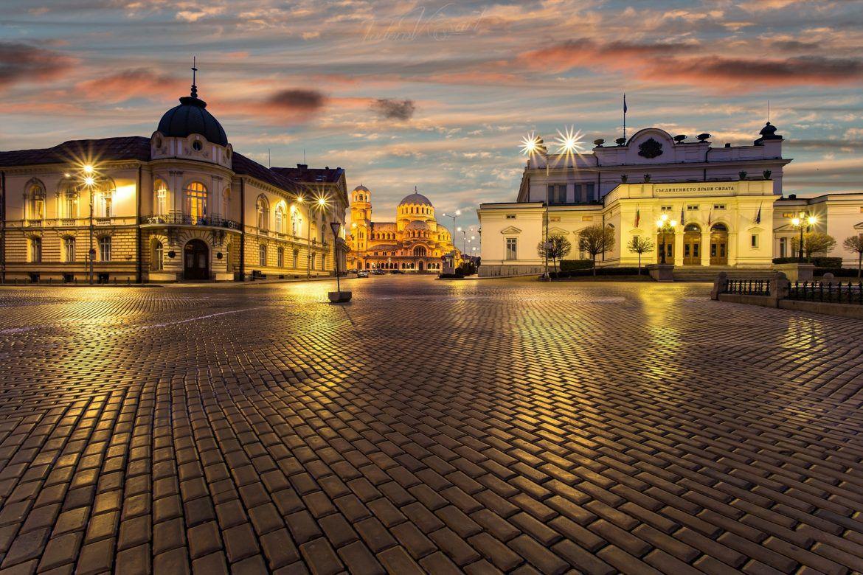 sofia-yellow-pavement